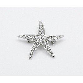 Brož hvězdice